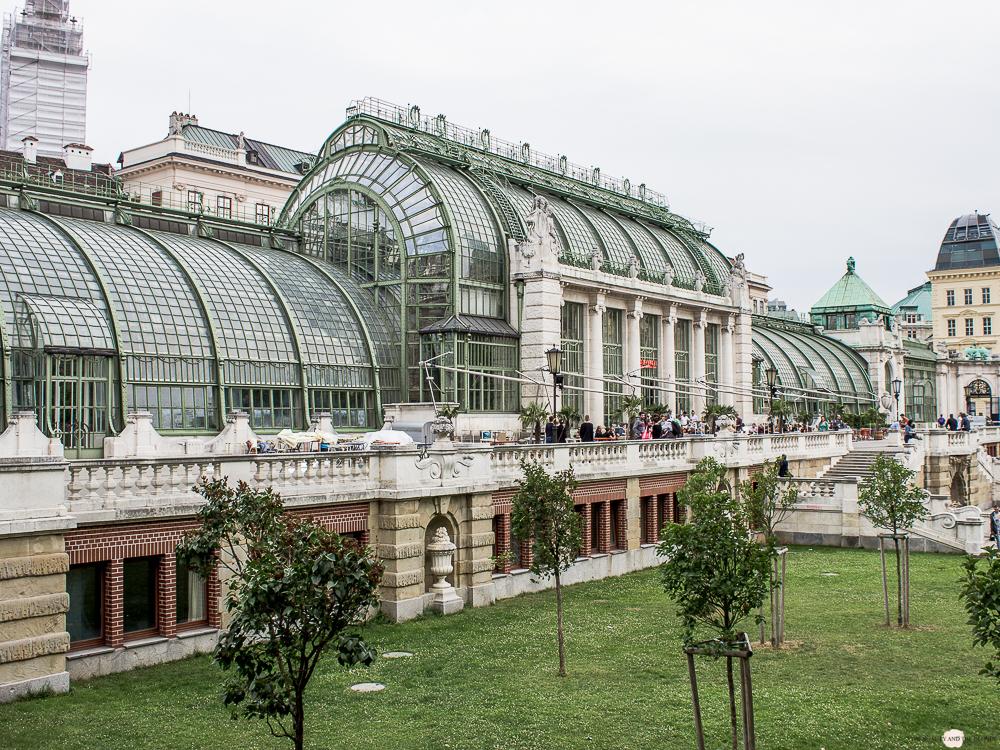 Wien in 24 Stunden Travelguide Tipps Reisetipps Schmetterlingshaus Palmenhaus Hofgarten